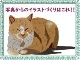 illusteye-cat-chab